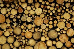 Pilovochny logs