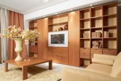 Furniture for premises