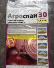 Ukryvna material Agrospan 30 1.6 meters