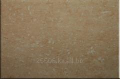 Porcelain tile 6202