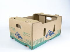 Boxes for vegetables and fruit from a corrugated