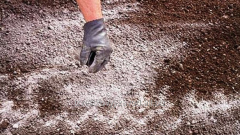 Limy fertilizers