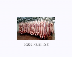 Selected pork in industrial volumes