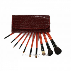 Set of brushes of 10 pieces in a red cover
