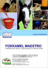 Fokkamel Maestro from 3 weeks to 12 weeks