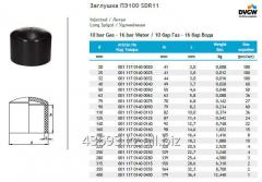 PE100 SDR11 cap