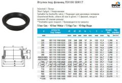 The plug under PE100 SDR17 flange