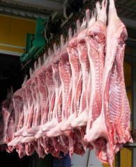 Мясо купить в Казахстане оптом
