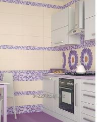piastrelle ceramiche da bagno