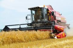 "Combine harvester of KZS-812 of ""PALESSE"