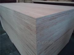 Plywood of 6-21 mm