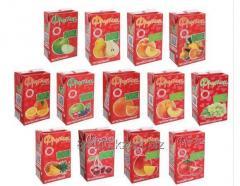 Drink juice Frutik, 0,2 l