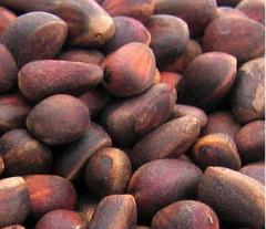 Кедровые орехи в скорлупе