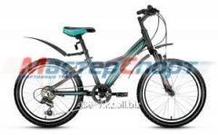 Велосипед горный Comanche 2.0