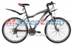 Велосипед горный Hesper 1.0 (17, 19)