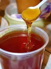 Medical buckwheat, Buckwheat honey, Honey bee