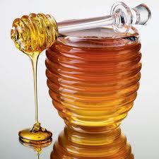 Medical donnikovy, Donnikovy honey, Honey