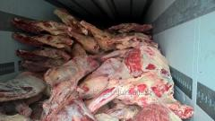 Beef meat in half carcasses 1 categories (Ukraine)