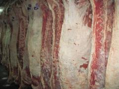 Beef in half carcasses quarters (cow) of 1080 tg