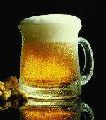 Planten en apparatuur voor de productie van bier,