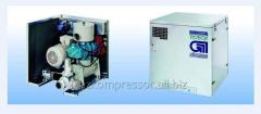 Compressor rotor BP 55