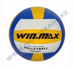 Мяч волейбольный FUN WinMax