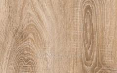 Quick Step laminate - 8 mm of LCR081 the Oak