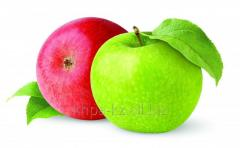 Fragrance food liquid Apple 003