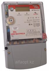 Electric power counter NP73E.2-12-1 matrix