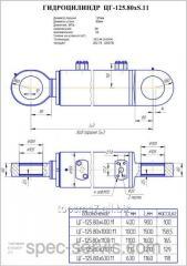 Гидроцилиндр ЦГ-125.80х1100.11 ковш, стрела ЕК 18 и рукоять ЕК-14