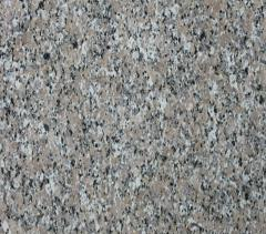 ZhALGYZ fine-grained gray Granite