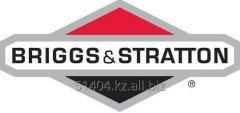 Gas Briggs generators