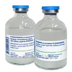 Vaccine from a strain 55-VNIIVVIM liquid, dry