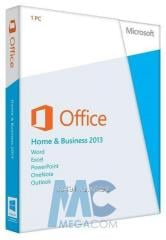 Software of Microsoft Office Home and Business