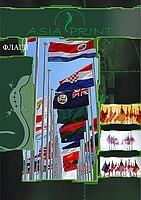 Flags in Almaty