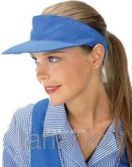 Visor for services sector