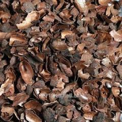 Peel of cocoa beans