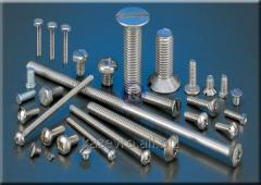 Corrosion-proof bolts