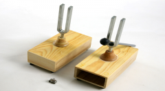 Tuning forks on resonant boxes (steam)