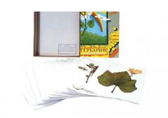 Herbarium Agricultural plants