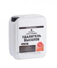 021-5 PROSEPT SALT CLEANER. Eliminator of vysol