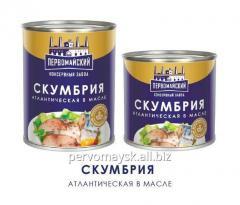 Mackerel in oil 240 gr