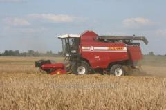 Combine harvester of Palesse GS 10