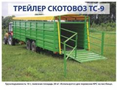 Trailer TS-9, TS-3 cattle truck