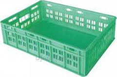 Box for transportation of daily chickens