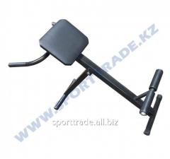 Bench for back muscles metal