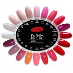 Color palette No. 1 001-020 PNB gel varnishes