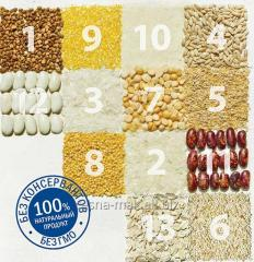 Oat flakes of Tsesn of 0,350 kg