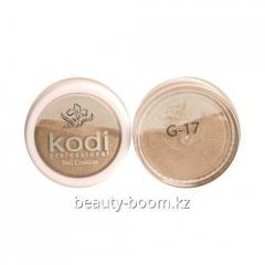 Color G17 acryle