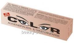 Color for eyelashes and eyebrows of Color